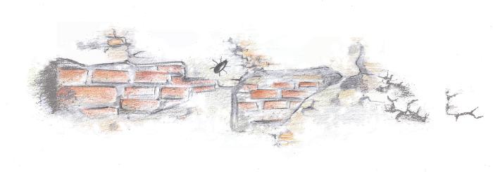 muro.png