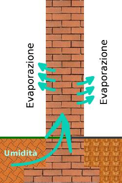muro1.png